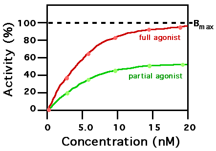 farmakologi kortikosteroid pdf